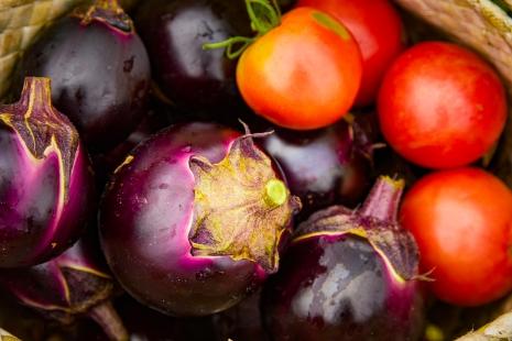 自社農場で獲れるトマトとなす