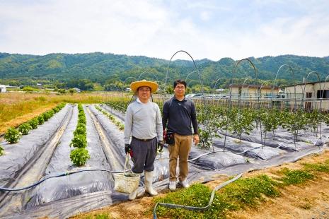 自然豊かな自社農場