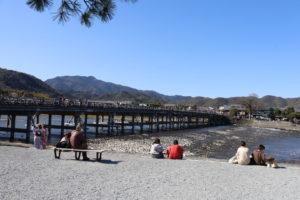 京都桜だより in嵐山