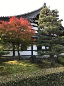 紅葉見ごろの東福寺
